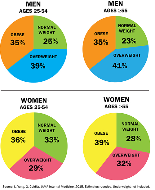 Obesity Pie Charts By And Age