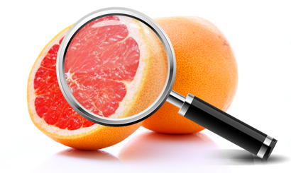 Grapefruit with magnifying glass