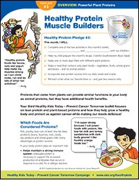 Healthy Protein Muscle Builder Overview