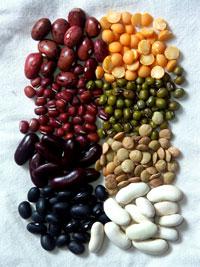 varities of beans