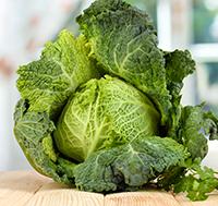 Sasvoy Cabbage