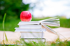 Bookstack topped by a  Red Apple on a Blanket in the Sunshine