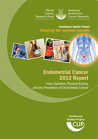 Endometrial Cancer 2013 Report cover
