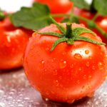 tomatoes and skin cancer