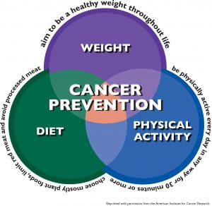 , Report: Half of Cancer Deaths are Preventable