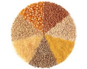 , Cancer-Fighting Whole Grains: Are They Trending on Your Plate?