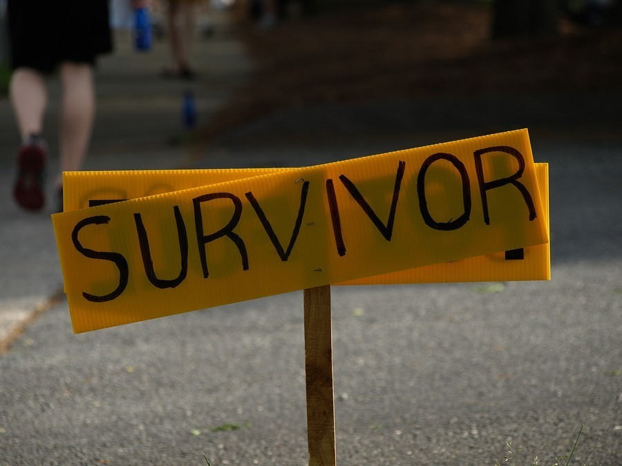 "yellow sign in the middle of a road that says ""survivors"""
