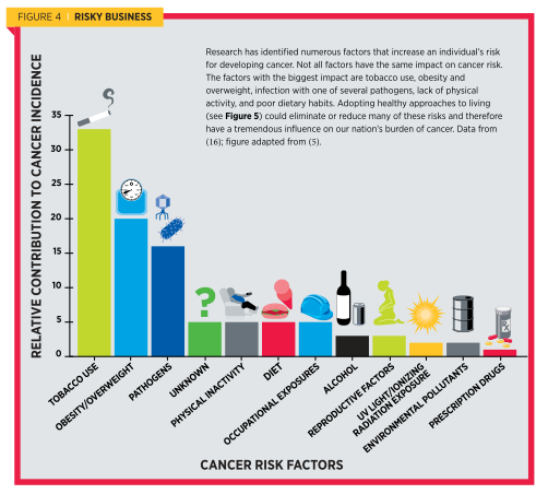 , Report: Half of Cancer Deaths Can Be Prevented