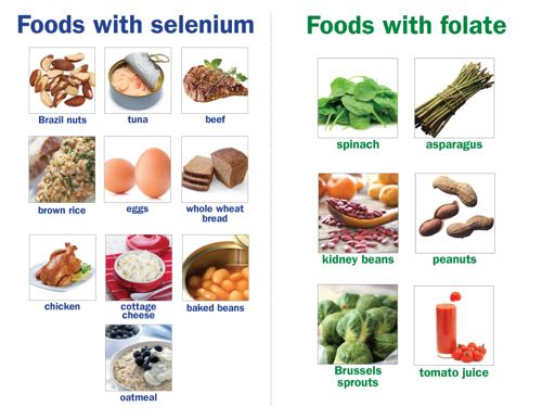, What Foods have Folate? Which have Selenium?