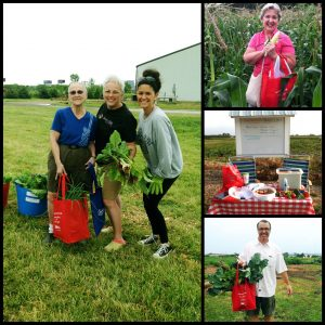 , Garden-Based Intervention Study Supports Healthier Eating for Cancer Survivors