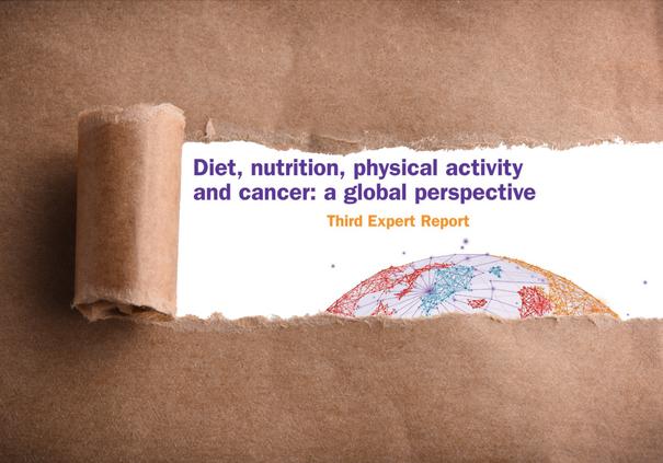 Third Expert Report reveal