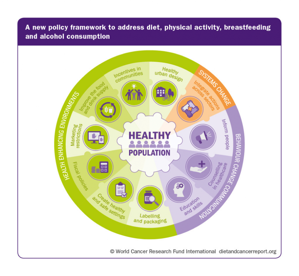 new policy framework on diet, physical activity, and breastfeeding infographic