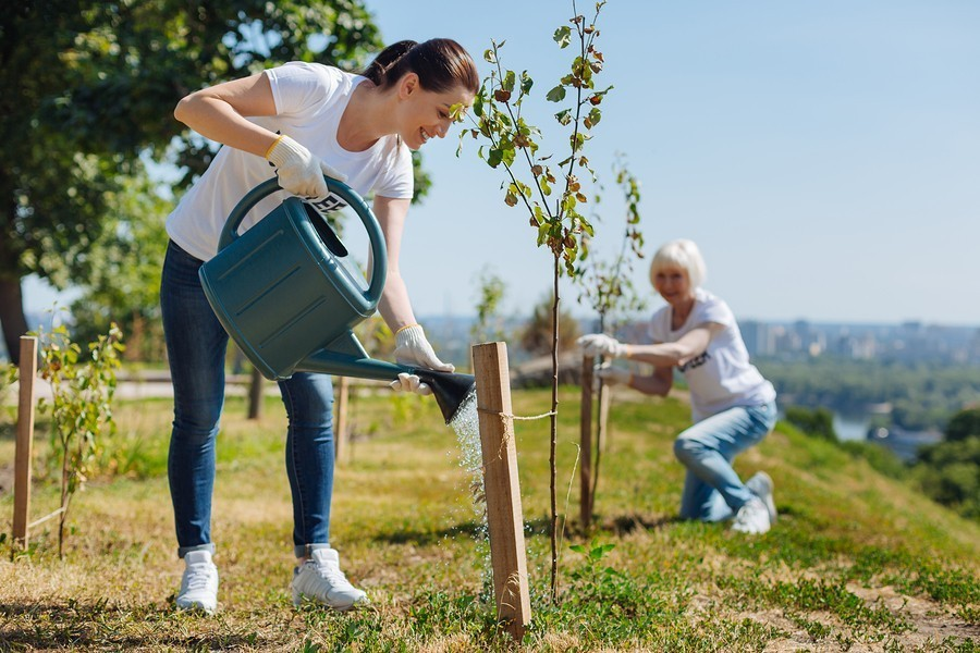 young woman watering tree with a watering can