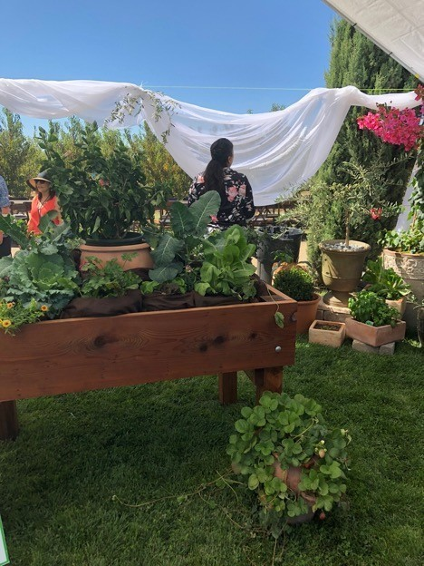 Farm-to-Table Nutrition Education
