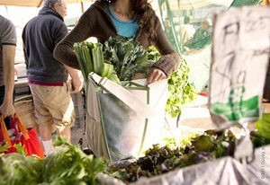 Fall Farmers Market, Exploring the Fall Farmers Market